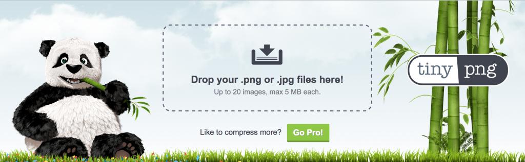 Imagen de la web de tiny png